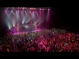 Живой концерт воколойды.(3D голограмма)